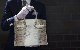 Đừng đầu tư tiền vào BĐS hay chứng khoán, thay vào đó hãy mua ngay một chiếc túi Hermes