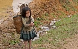 GĐ World Bank: Việt Nam đã thành công kỷ lục về giảm nghèo, nhưng…