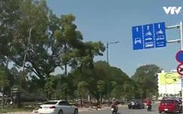 Ngày đầu cấm xe tải quanh sân bay Tân Sơn Nhất: Giao thông thông thoáng