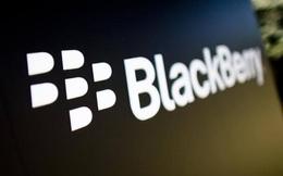 Tạp chí nổi tiếng tiết lộ bức tường bảo mật lừng danh của BlackBerry đã bị giải mã
