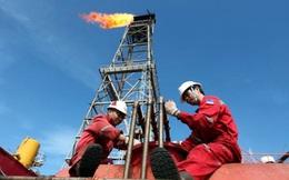 Hàng vạn nhân viên ngành dầu khí Việt Nam sẽ phải lo lắng khi thấy số liệu này