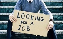 Cử nhân giấu bằng đại học đi xin việc vì lao động phổ thông dễ tìm việc hơn