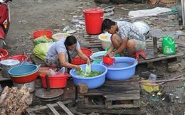 """Từ chuyện """"Hàng ngon đem xuất khẩu, đồ bẩn bán cho nhau ăn"""" đến Tốc độ tăng ung thư người Việt cao nhất TG"""