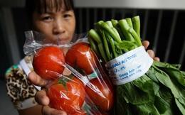 Mỗi ngày, 10 triệu dân thủ đô ăn 1.000 tấn thịt, 600 tấn cá, 3.200 tấn rau nhưng chỉ có 7 điểm bán đồ chuẩn sạch