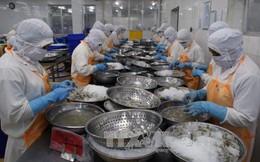 Xuất khẩu thủy sản ước đạt 6,4 tỷ USD