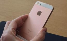 Tính riêng thị trường Trung Quốc đã có 3,4 triệu chiếc iPhone SE được đặt hàng