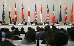 Đã có thể đọc toàn văn Hiệp định TPP bằng tiếng Việt