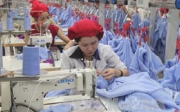 Nikkei: TPP mang đến sức hấp dẫn về xuất khẩu và đầu tư cho Việt Nam