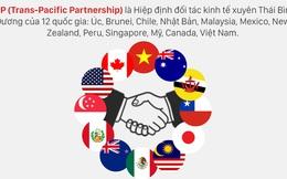 Hướng đi nào cho doanh nghiệp Việt Nam trên sân chơi TPP?