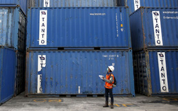 Thương mại toàn cầu đang trên đà giảm sâu
