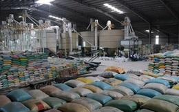 Sản lượng gạo sụt giảm tại châu Á đe dọa an ninh lương thực