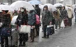 Vì sao người Nhật vui vẻ xếp hàng bất kể lễ hội hay thảm họa?