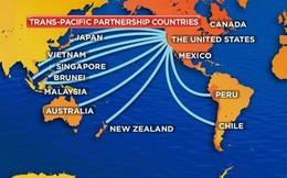 Việt Nam sắp trình Quốc hội phê chuẩn hiệp định TPP