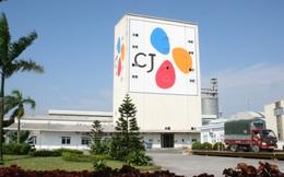 Nổi tiếng với cụm rạp CGV, nhưng ít ai ngờ tập đoàn Hàn Quốc này đã cắm rễ tại Việt Nam trên hàng loạt lĩnh vực