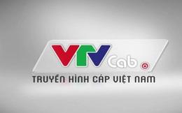 Sắp cổ phần hóa VTVcab