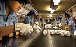 Việt Nam nằm trong nhóm 8 nền kinh tế mới nổi tích cực trong 2016