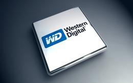 Western Digital công bố mua hơn 100 bằng sáng chế của IBM