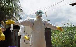 WHO tuyên bố đại dịch Ebola đã chính thức chấm dứt