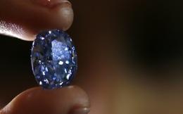 Viên kim cương xanh hình bầu dục lớn nhất thế giới chuẩn bị được đấu giá lên đến 780 tỷ đồng