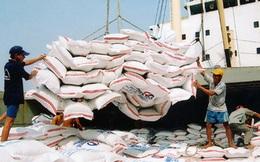 [Infographics] Tình hình xuất khẩu gạo của Việt Nam qua các năm