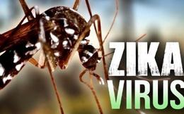 Thực hư thông tin Khánh Hòa có 4 người nhiễm virus Zika