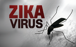 Vì sao Zika có khả năng lây lan nhanh ở Việt Nam?