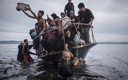 Chùm ảnh thảm cảnh người tị nạn đoạt giải Pulitzer 2016