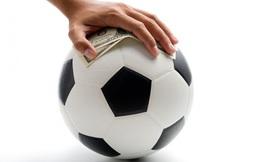 Đặt cược thể thao: Nhu cầu thực tiễn, có thể huy động được nguồn vốn đầu tư nhưng cần phải có báo cáo tác động cụ thể