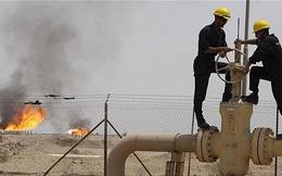 Giới đầu cơ đang đổ xô mua dầu