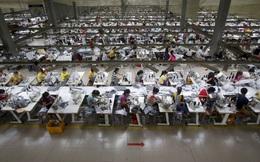 Số doanh nghiệp mới tăng kỷ lục trong vòng 6 năm, nhưng Việt Nam vẫn còn thua xa mức chuẩn của thế giới