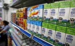 Người Việt uống sữa tươi chỉ bằng một nửa người Thái: Cơ hội cho Vinamilk, TH Milk... còn rất lớn