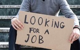 Hợp đồng lao động: Những điều cơ bản các tân cử nhân cần biết để bảo vệ mình trong quá trình xin việc