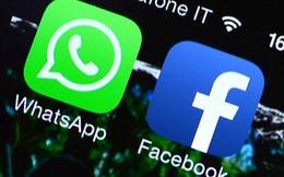 Thêm một quốc gia Châu Âu yêu cầu WhatsApp ngừng chia sẻ dữ liệu người dùng với Facebook