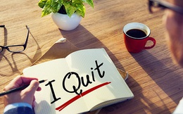 Chuyện tuyển dụng ở Startup/SME: Không yêu đừng nói lời cay đắng