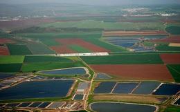 Công ty Israel này là minh chứng để thấy lời hiệu triệu của Thủ tướng về nông nghiệp công nghệ cao quan trọng đến thế nào