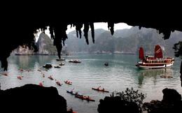 Quảng Ninh: Yêu cầu dừng hoạt động dịch vụ chèo kayak trên vịnh Hạ Long