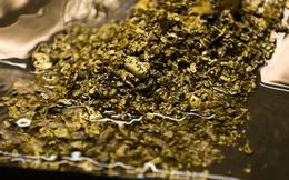 43 kg vàng, 3 tấn bạc lẫn trong… nước thải ở Thụy Sĩ