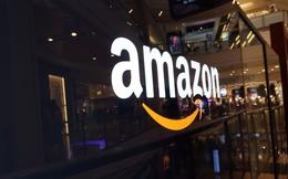 Chưa bao giờ cổ phiếu Amazon có giá cao tới vậy, gần 1.000 USD cho 1 cổ phiếu!