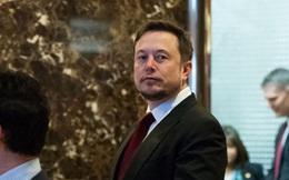 Tại sao chỉ còn Elon Musk đứng về phe Tổng thống Donald Trump, trong khi CEO Uber đã ù té chạy?