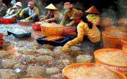 """Ngư dân Thanh Hóa được mùa """"vàng trắng"""""""