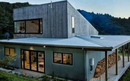 Ngắm ngôi nhà giữa rừng quá đẹp và hiện đại