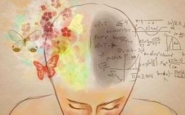 7 nguyên tắc tư duy giúp bạn rèn luyện khả năng sáng tạo như Leonardo da Vinci