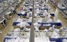 Robot ở nhà máy giày Nike và mối đe dọa treo trên đầu những lao động giá rẻ ở châu Á