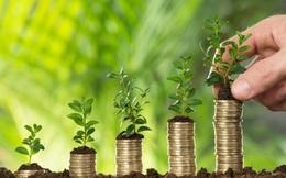 5 giải pháp cần thực hiện nhằm phát triển khu vực kinh tế hàng năm tạo ra 1 triệu việc làm, đóng góp hơn 43% GDP