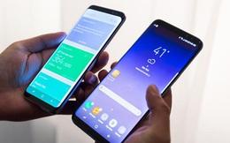 Kỳ vọng doanh thu Galaxy S8 sẽ phá vỡ kỉ lục S7 trong năm ngoái