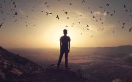 Hãy cứ theo đuổi đam mê đi và thất nghiệp sẽ theo đuổi bạn