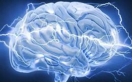 6 quan niệm sai lầm về bộ não có thể bạn không biết