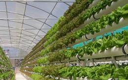 """""""Đầu tư nông nghiệp công nghệ Israel không đắt như vẫn tưởng"""""""