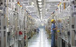 Vì sao người Nhật ngày làm việc 9 tiếng, năng suất lao động vẫn thua người Anh chỉ làm 7 tiếng?