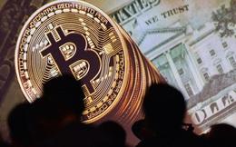 Newton, bong bóng cổ phiếu South Sea và hiện tượng đầu tư 'hot' Bitcoin trên thế giới và Việt Nam